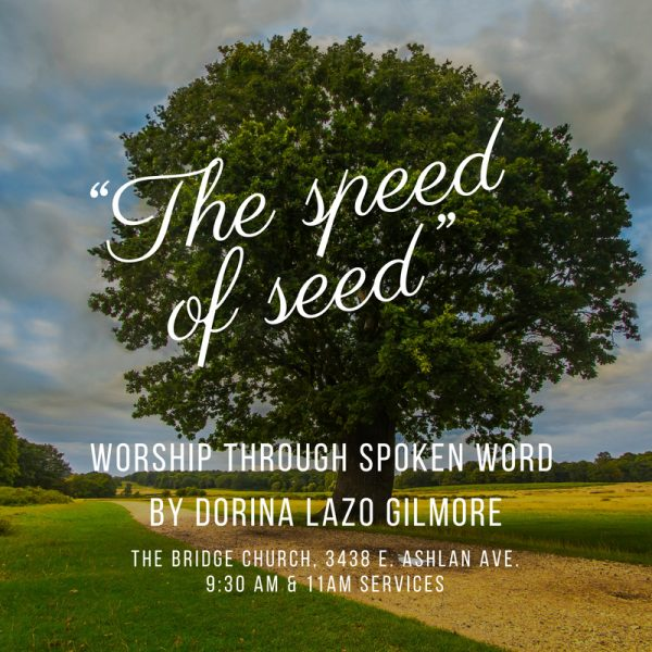 "The ""speed of seed"": A spoken word on bearing fruit 